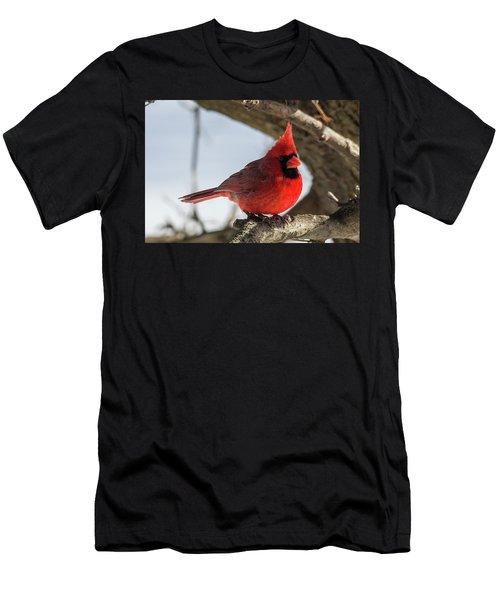Happy Mister Cardinal Men's T-Shirt (Athletic Fit)