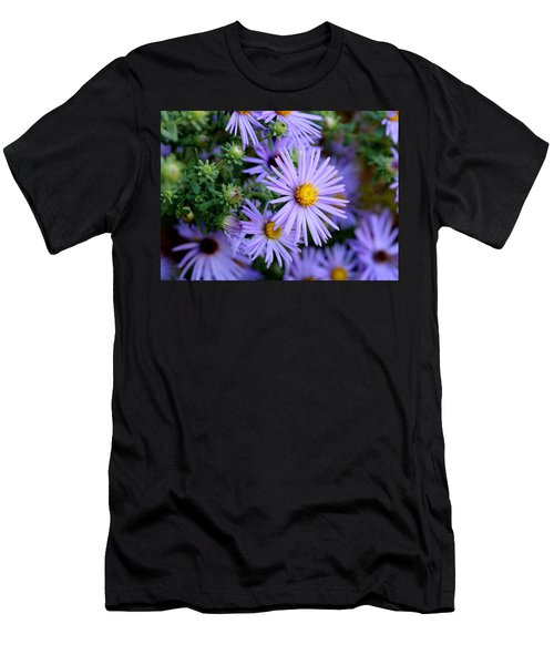 Hardy Blue Aster Flowers Men's T-Shirt (Athletic Fit)