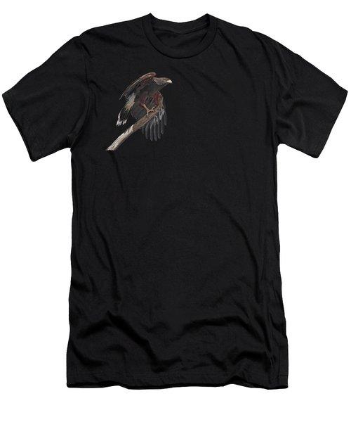 Harris Hawk - Transparent 2 Men's T-Shirt (Athletic Fit)