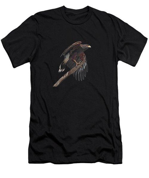 Harris Hawk - Transparent Men's T-Shirt (Athletic Fit)