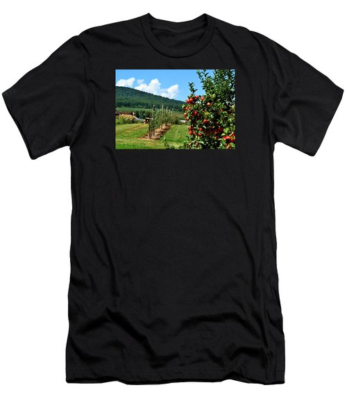 Harvest Time In The Catoctin Mountains Men's T-Shirt (Athletic Fit)