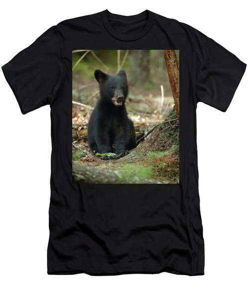 Have You Seen My Mother Men's T-Shirt (Slim Fit)