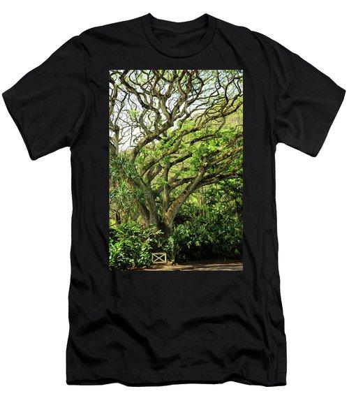 Hawaii Tree-bard Men's T-Shirt (Athletic Fit)
