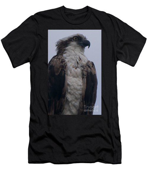 Hawk Looking Into The Distance Men's T-Shirt (Athletic Fit)