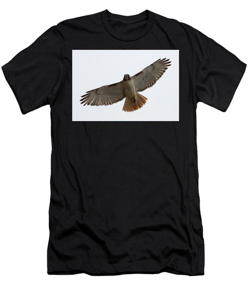 Men's T-Shirt (Athletic Fit) featuring the photograph Hawk Overhead by Brian Hale