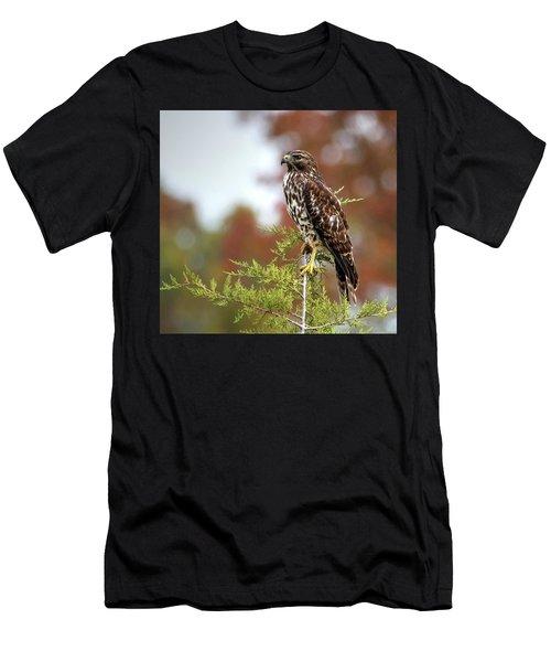Red Shoulder Hawk Profile Men's T-Shirt (Athletic Fit)
