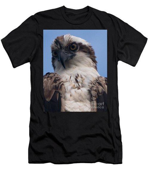 Hawk Profile Men's T-Shirt (Athletic Fit)