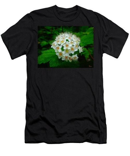 Hawthorn Hearts Men's T-Shirt (Athletic Fit)