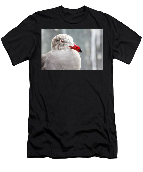 Heerman's Gull Men's T-Shirt (Athletic Fit)