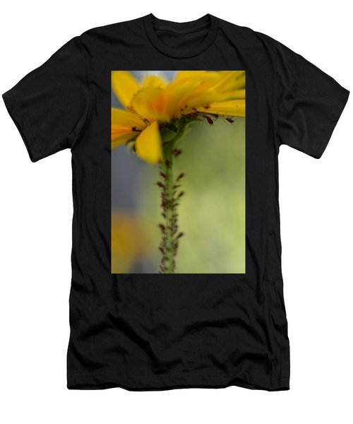 Heliopsis Infested Men's T-Shirt (Athletic Fit)