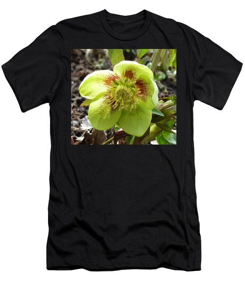 Hellebore Men's T-Shirt (Athletic Fit)