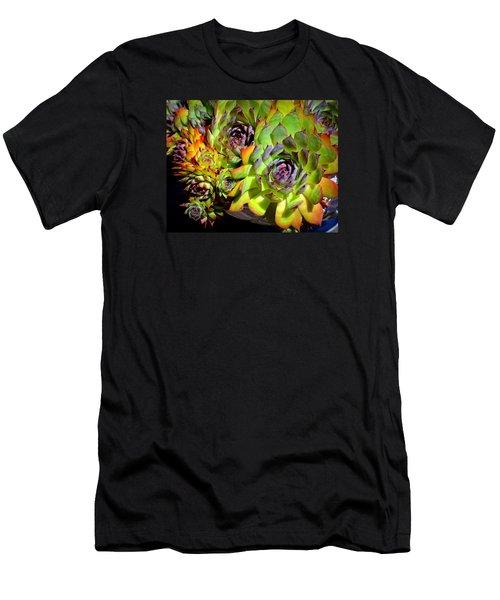Hens 'n Chicks Men's T-Shirt (Slim Fit) by Lori Seaman