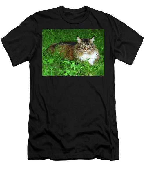 Men's T-Shirt (Athletic Fit) featuring the photograph Hercules Maine Coon Elegance by Roger Bester