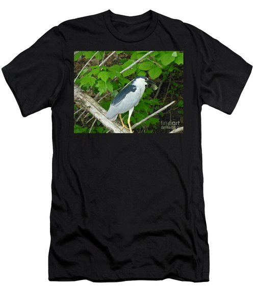 Heron With Dinner Men's T-Shirt (Athletic Fit)