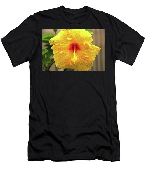 Hibiscus Flower After The Rain Men's T-Shirt (Athletic Fit)