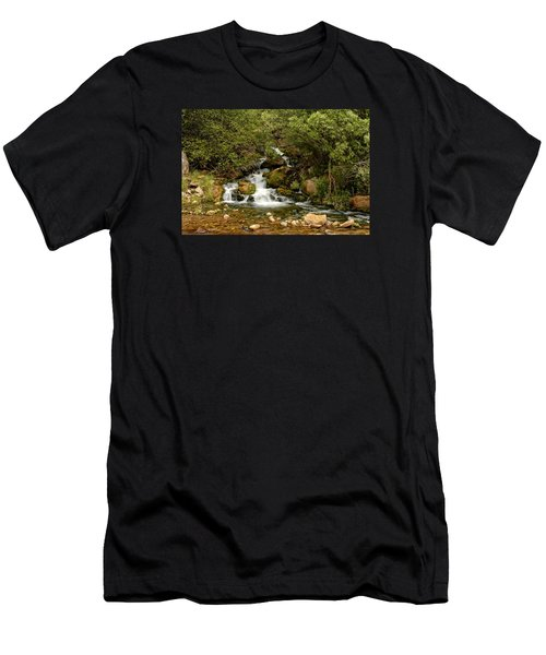 Hidden Falls Men's T-Shirt (Athletic Fit)