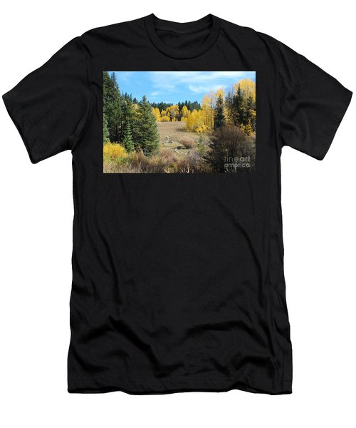 High Country Autumn Colors In Colorado Men's T-Shirt (Athletic Fit)