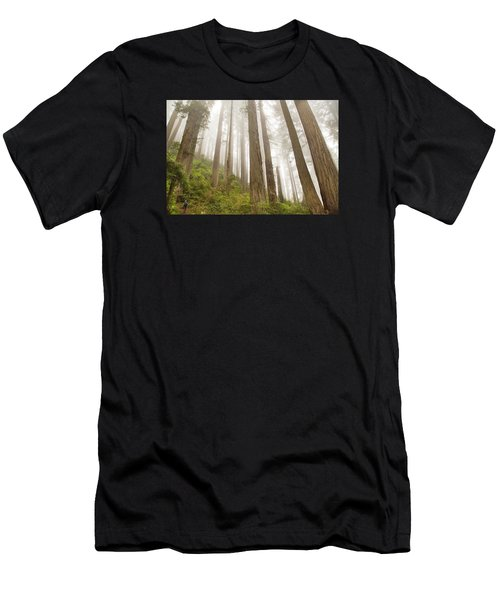 Hike Through The Redwoods Men's T-Shirt (Athletic Fit)