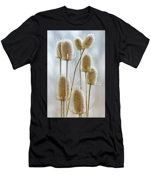 Hoar Frost - Wild Teasel Men's T-Shirt (Athletic Fit)