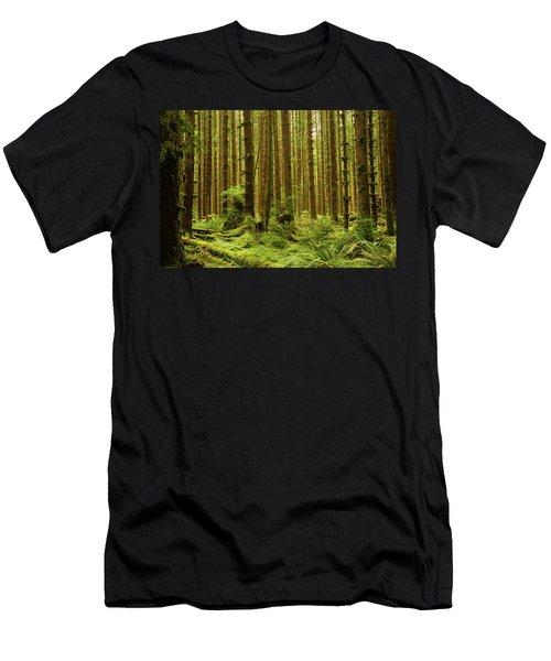 Hoh Rain Forest Men's T-Shirt (Athletic Fit)