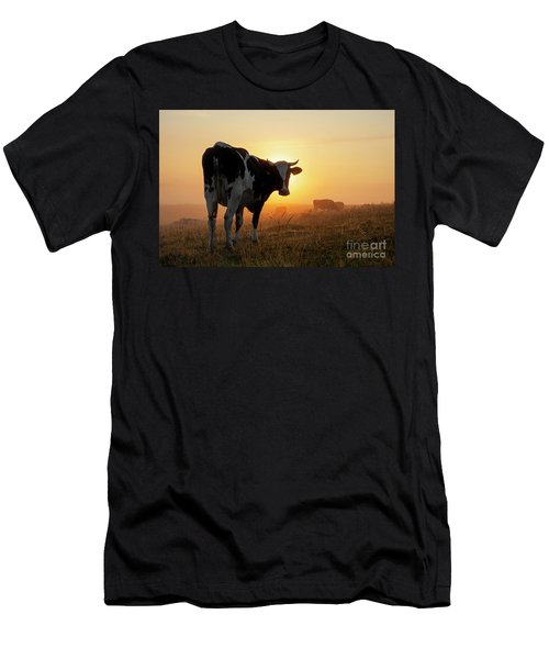 Holstein Friesian Cow Men's T-Shirt (Athletic Fit)
