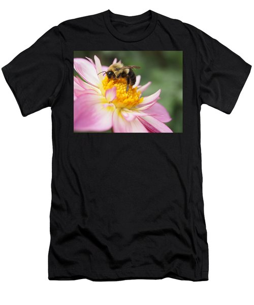 Honey Bee Men's T-Shirt (Athletic Fit)