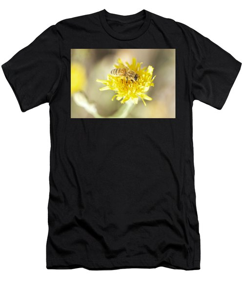 Honeybee Men's T-Shirt (Athletic Fit)