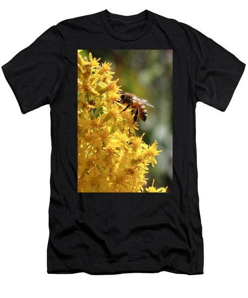 Honeybee On Showy Goldenrod Men's T-Shirt (Athletic Fit)