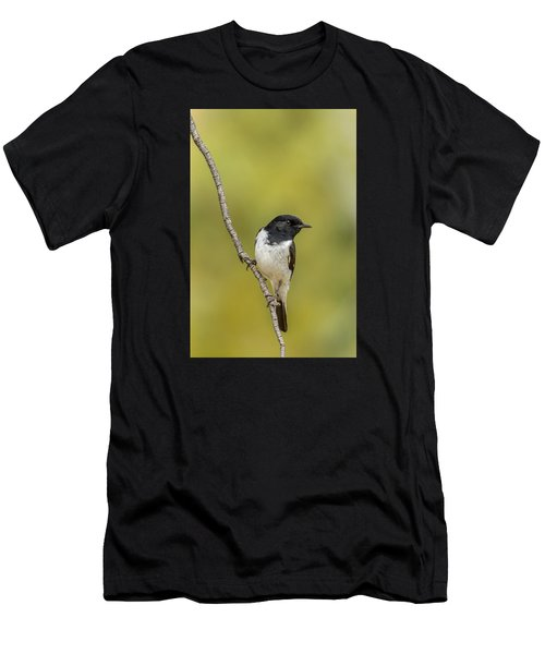 Hooded Robin Men's T-Shirt (Athletic Fit)