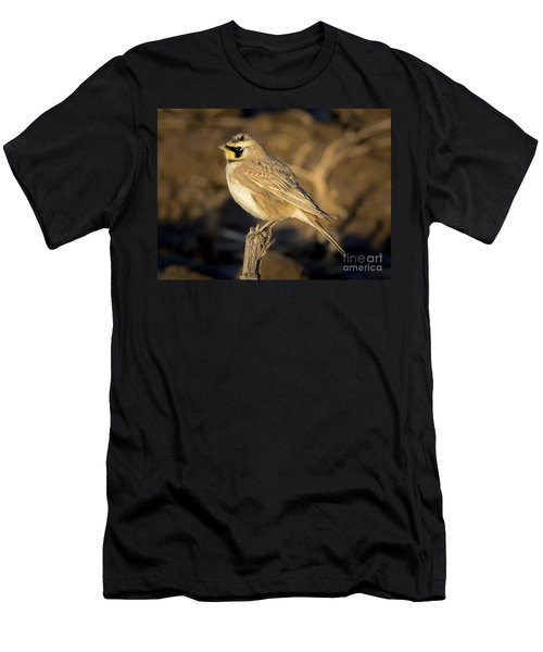 Horned Lark Men's T-Shirt (Athletic Fit)