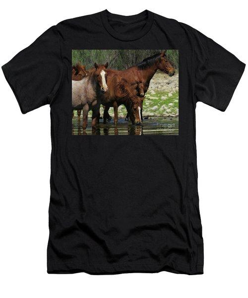 Horse 7 Men's T-Shirt (Athletic Fit)