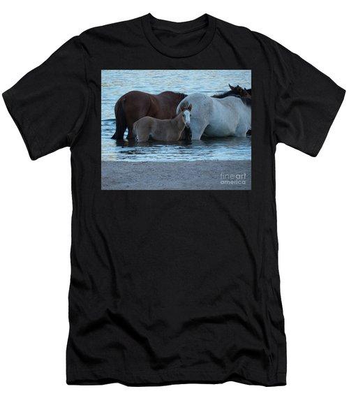 Horse 9 Men's T-Shirt (Athletic Fit)