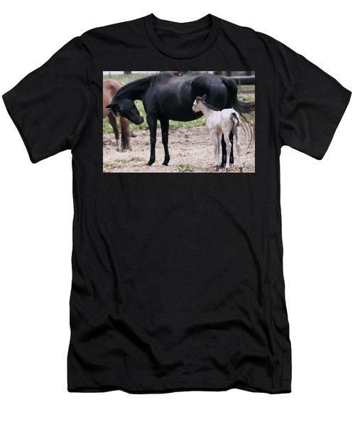 Horse And Colt Men's T-Shirt (Slim Fit) by Debra Crank