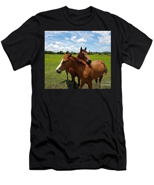 Horse Cuddles Men's T-Shirt (Athletic Fit)