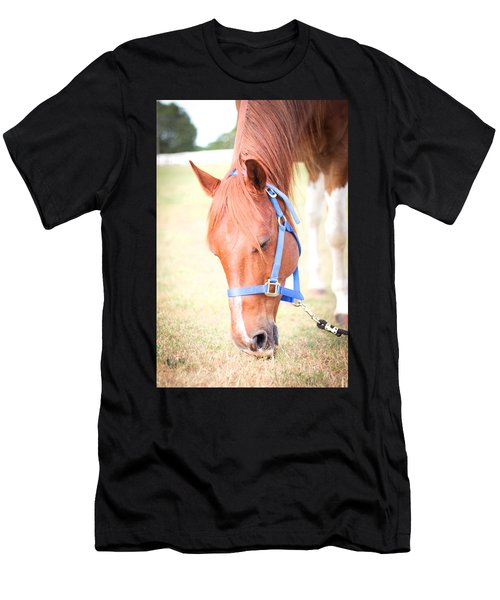 Horse Eating In A Pasture In Vibrant Color Men's T-Shirt (Athletic Fit)
