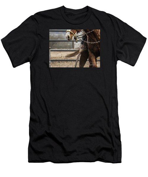 Horse In Hackamore Men's T-Shirt (Athletic Fit)