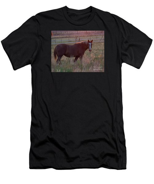 Horses 2 Men's T-Shirt (Athletic Fit)