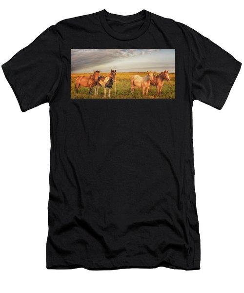 Horses At Kalae Men's T-Shirt (Athletic Fit)