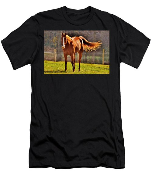 Horse's Tail Men's T-Shirt (Athletic Fit)