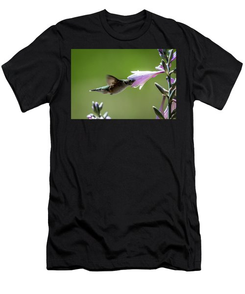 Hosta And Hummingbird Men's T-Shirt (Athletic Fit)