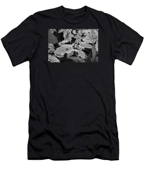 Men's T-Shirt (Slim Fit) featuring the photograph Hosta Bw - Pla363 by G L Sarti