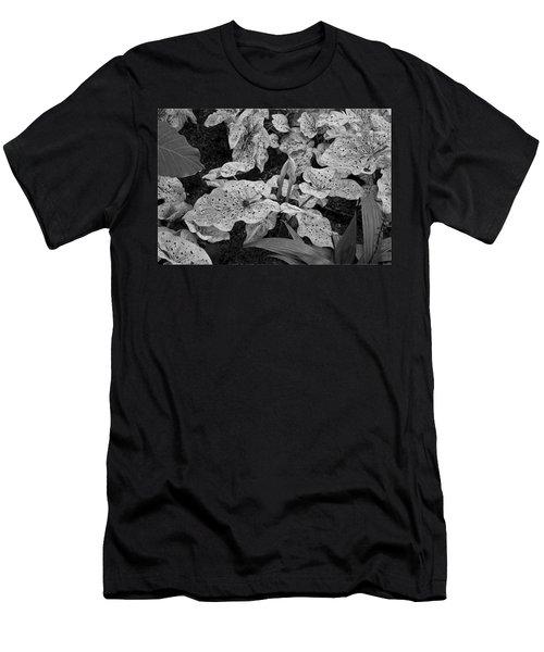 Hosta Bw - Pla363 Men's T-Shirt (Athletic Fit)