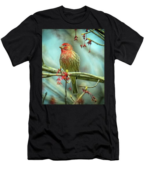 House Finch In Spring Men's T-Shirt (Athletic Fit)