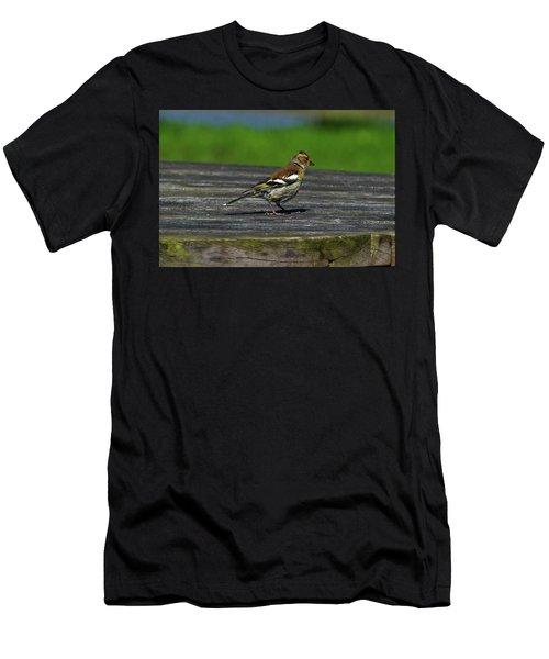 House Finch Men's T-Shirt (Athletic Fit)
