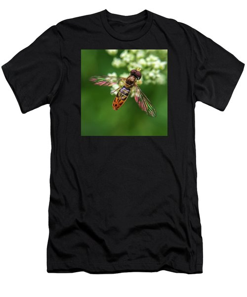 Hover Fly Men's T-Shirt (Athletic Fit)