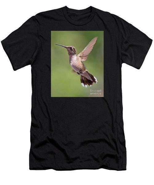 Hovering Hummer 1 Men's T-Shirt (Athletic Fit)