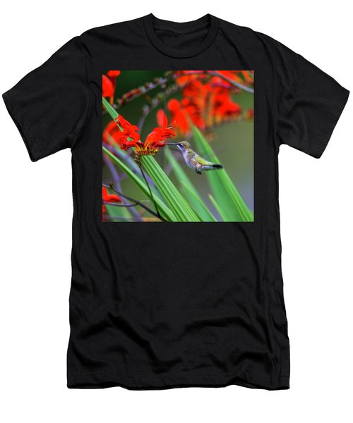 Hummer Lunch Men's T-Shirt (Athletic Fit)