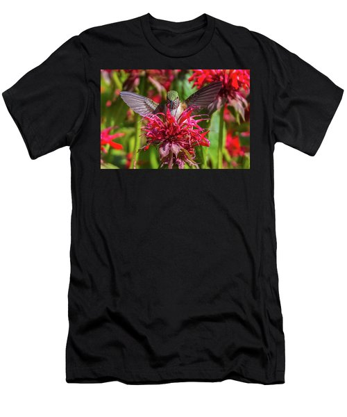 Hummingbird At Eagles Nest Men's T-Shirt (Athletic Fit)