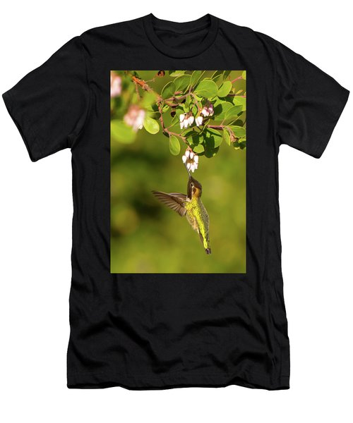 Hummingbird And Manzanita Blossom Men's T-Shirt (Athletic Fit)