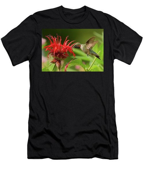 Hummingbird Delight Men's T-Shirt (Athletic Fit)